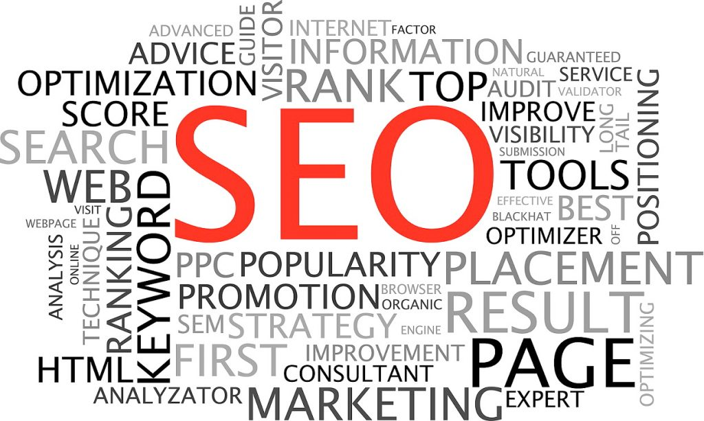 search engine optimization guide for dummies