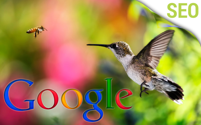 Simple Tips on Preparing for the Google Hummingbird Update
