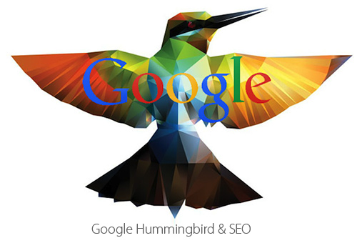 the humming bird update and its impact on SEO