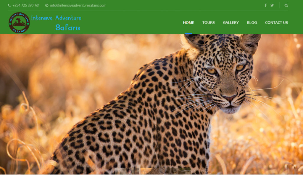 Intensive Adventure Safaris - Homepage