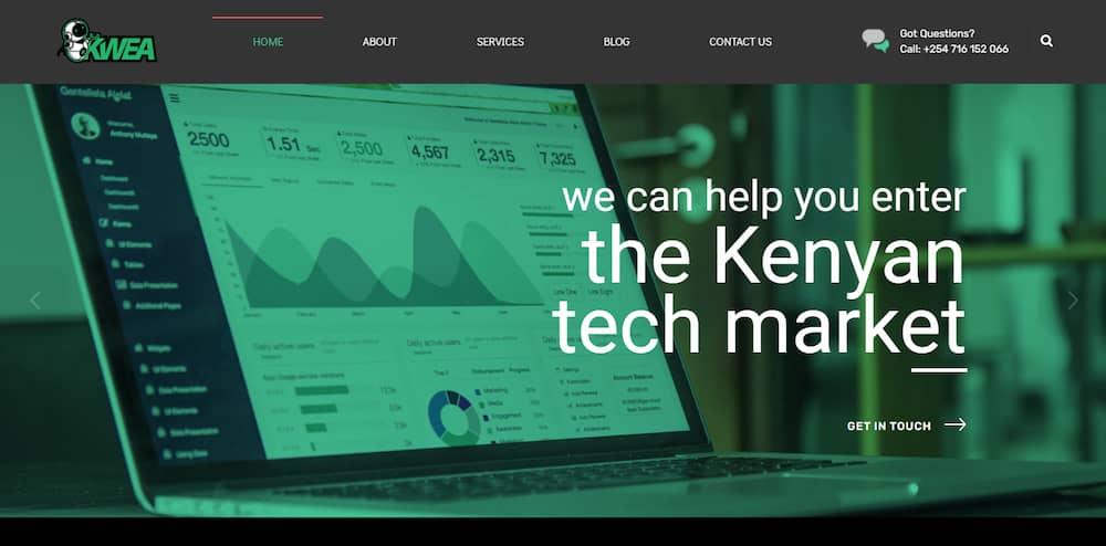 Web Design Services - Kwea Ltd